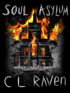 Soul Asylum book cover by Fireclaw Films
