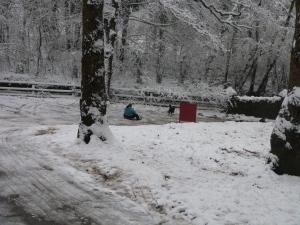 Winter Gimpics
