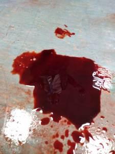 School Hall Slaughter